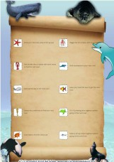 Under the Sea Scavenger Hunt